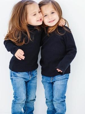 Scarlet & Violet S