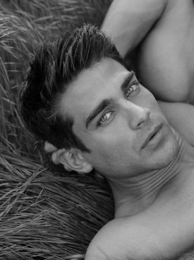 Alex Taraghi