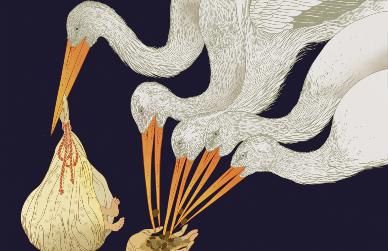 Marcos - Chin   Art
