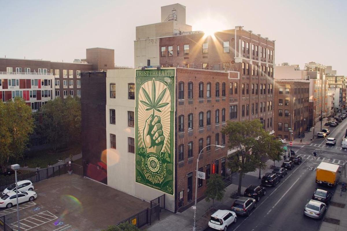 Studio Number One Creates Multi-City Art Installation with CBD Brand Charlotte's Web